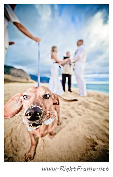 059_wedding_oahu_Hawaii_Photographer_