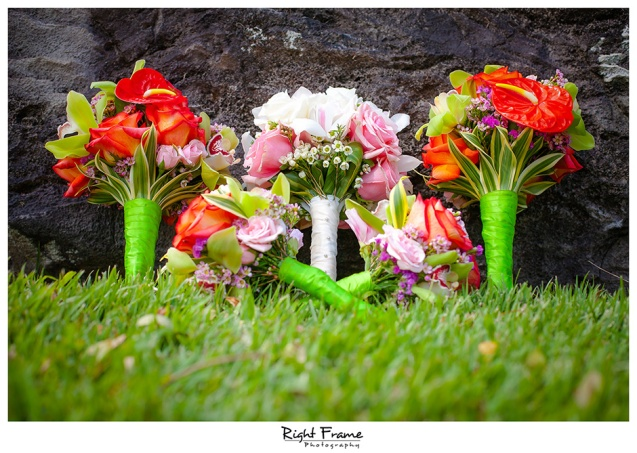 005_Oahu Wedding Photography paliku gardens