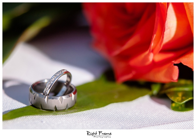 043_Oahu Wedding Photography paliku gardens