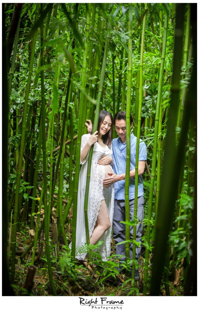 Oahu Maternity Photography in Bamboo Forest